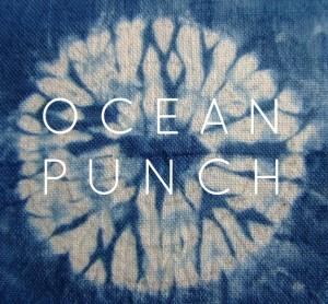 KayLeotard_OceanPunch